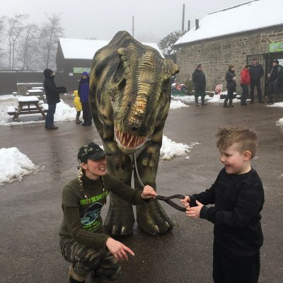 Tricksy the T-Rex at Matlock Farm